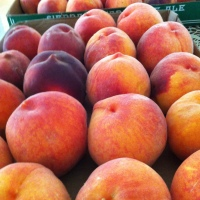 Paonia Peaches! Elderberry peach crisp, Frangelico peach preserves, Serrano peach hot sauce