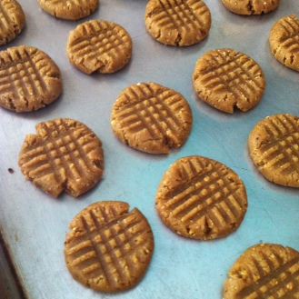 ready to pop the GF almond butter cookies into the oven
