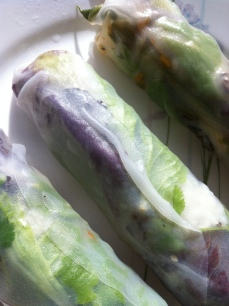 Fresh spring rolls with japonica and jasmine rice