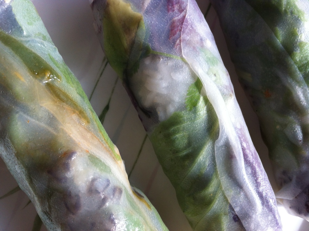 the translucent magic of spring rolls