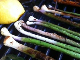 a close up of the lovely grilled spring onions