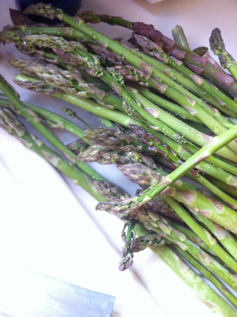 the haul - wild asparagus a'plenty