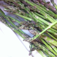 Wild Asparagus Soup and Other Joys