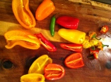 miniature bell peppers
