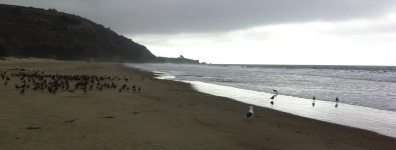 Stinson Beach on a foggy morning, fall chill in the air