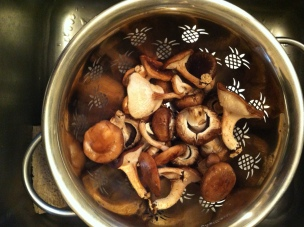 a merry mix of mushrooms