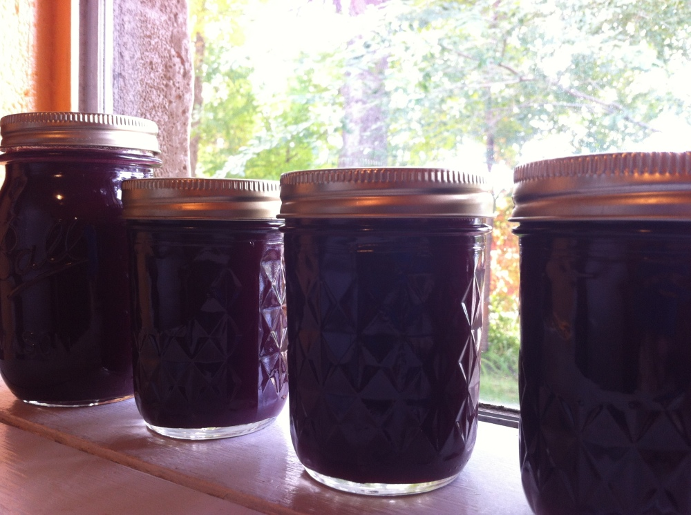 Grape jelly - made with honey, Pomona's Pectin and smiles