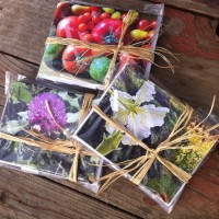 They're here! Pachamama's Beautiful Food Limited Edition Note Card Sets