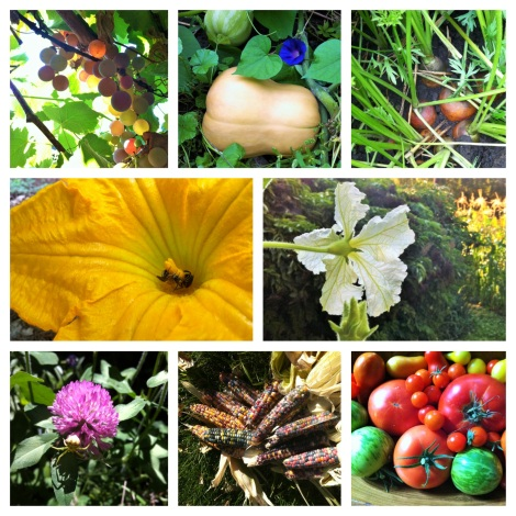 In the Garden note card mosaic