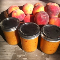 Dominguez Canyon Jalapeno Peach Hot Sauce