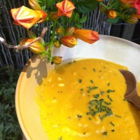 Of Butternut Squash Coconut Curry Soup, Trumpet Vines and Impermanence