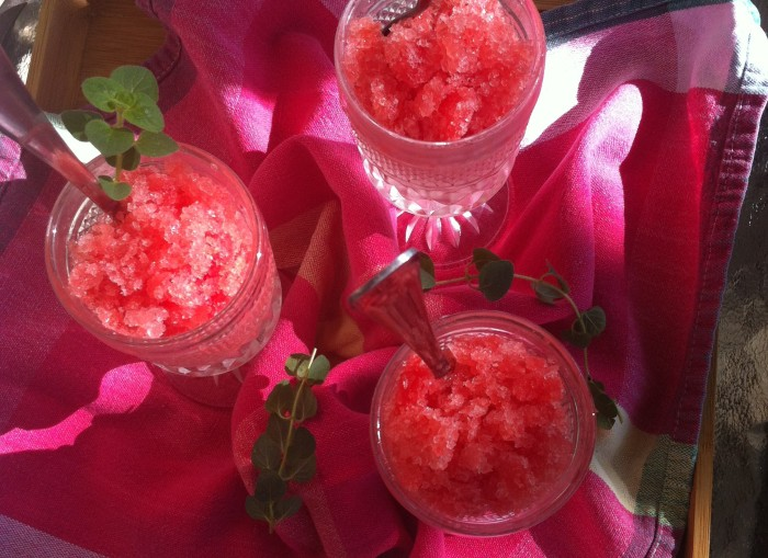on the front porch with watermelon jalapeno granita