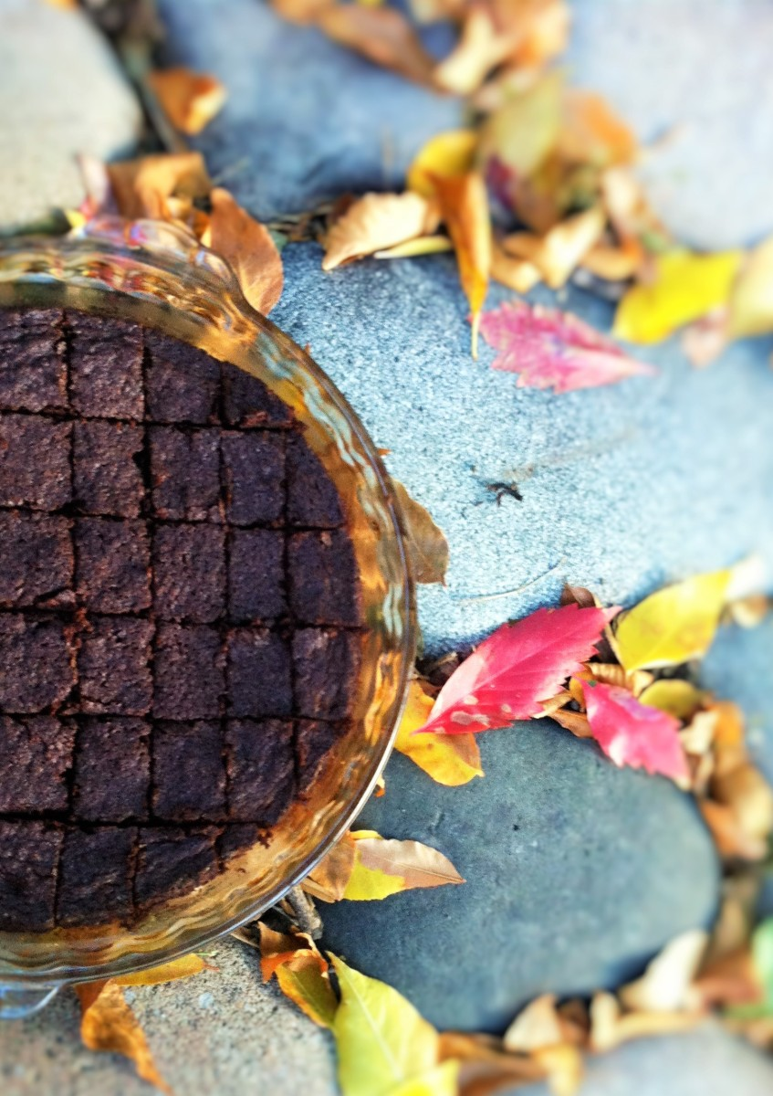 Double Coconut Chocolate Brownies on a Perfect Fall Day