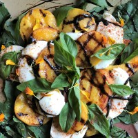 Grilled Colorado Peach Caprese Salad