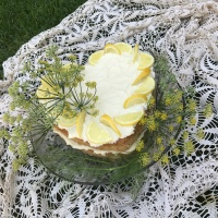 GF Fresh Fennel Picnic Cake with Lemon Marscapone Frosting