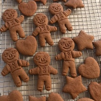 Spicy GF Gingerbread Cookies